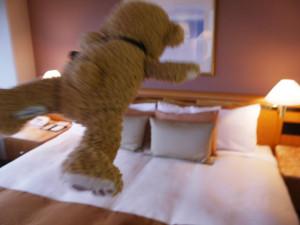 ベッドにダイブ