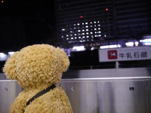 ホームで新幹線の到着を待つろじねこさん