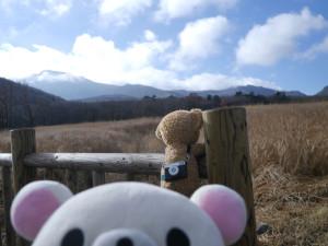 2015122223_kumamoto