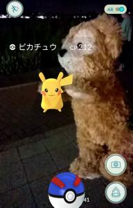 2016082153_enoshima